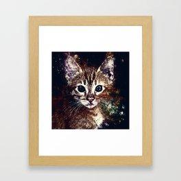 cat years wsfn Framed Art Print