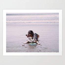 Coronado Dog Beach Art Print