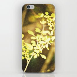 Thorns iPhone Skin