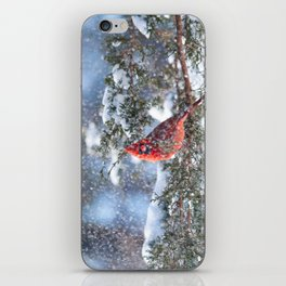 Let It Snow (Northern Cardinal) iPhone Skin