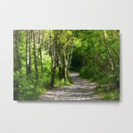 Forest path 45 Metal Print