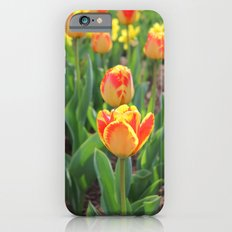 First Sign Of Spring Slim Case iPhone 6s