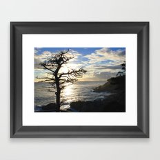 Branch Out Framed Art Print