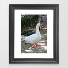 French Goose Framed Art Print