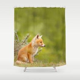 The Cute Fox Kit (Red Fox Cub) Shower Curtain