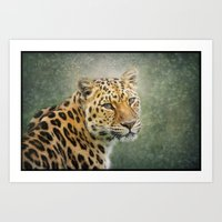 leopard Art Prints featuring Leopard by Pauline Fowler ( Polly470 )