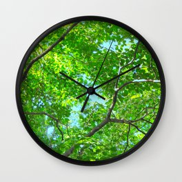 Canopy of Green, Leafy Branches with Blue Sky Wall Clock