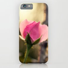 Enchanted Rose iPhone 6s Slim Case
