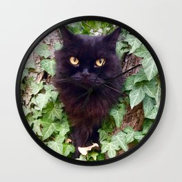 Pomponio Mela cat owl Wall Clock