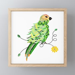 Bird of Costa Rica, parakeet Framed Mini Art Print