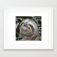 sloth Framed Art Prints featuring Sloth by Bruce Stanfield
