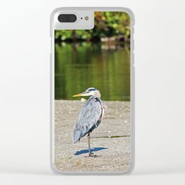 Looking for the Dream Clear iPhone Case