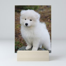 Cute samoyed dog puppy in the forest Mini Art Print