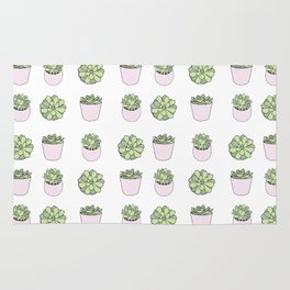 Green and pink suculents in flowerpots Rug