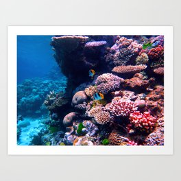 Colorful Tropical Coral Reef Art Print