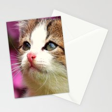 Kittens in bowl Stationery Cards