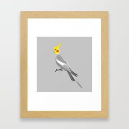 Cockatiel Framed Art Print