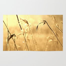 Foggy Morning With Golden Tones Rug