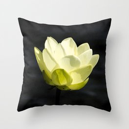 Cold As The Man In The Moon Throw Pillow