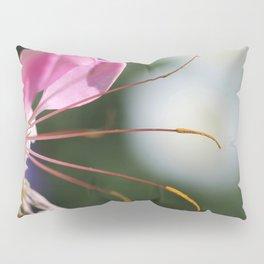 Cleome named Sparkler Pink Pillow Sham