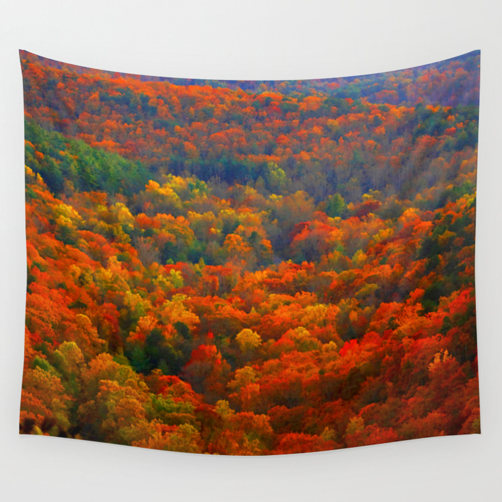 Amicalola Autumn In The Blue Ridge Mountains Wall Tapestry by Tinaastoffelarts TPS2748236