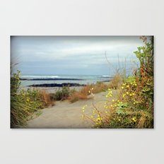 Killarney Coastline Canvas Print