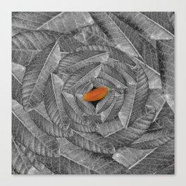 Orange Leaf On Grey And Silver Leaves - Beautiful Background - Autumn mood - #Society6 #buyart Canvas Print