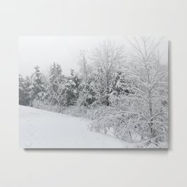 Snow in January Metal Print