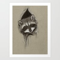raccoon Art Prints featuring Raccoon by Daydreamer