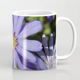 European Daisy Photography Print Coffee Mug