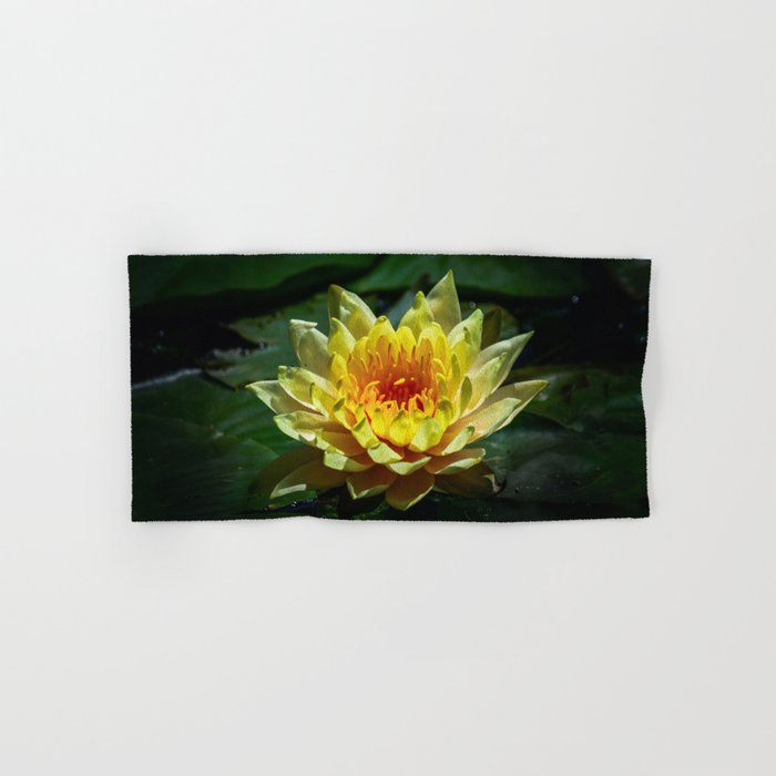 Yellow water lily Hand & Bath Towel