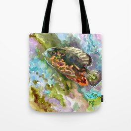 Oscar Fish, Aquarium Art, turquoise blue olive green fish underwater scene Tote Bag