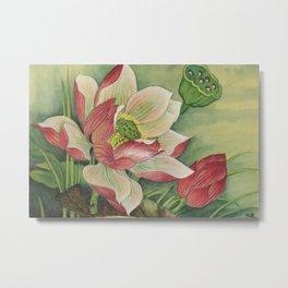 荷花Lotus Metal Print