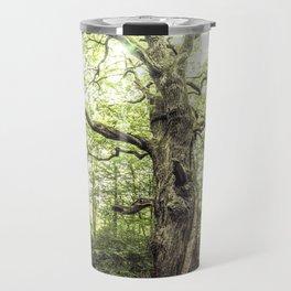 Ancient Tree, Mörfelden - Germany Travel Mug