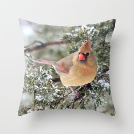 Frosty Female Cardinal Throw Pillow
