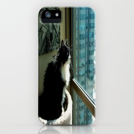 Surveying Her Realm (Gracie Queen of Chicago Collection) iPhone Case