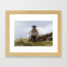 Who are ewe? Framed Art Print