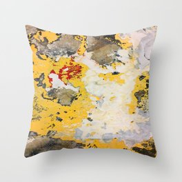 Broken Paint Throw Pillow