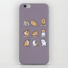 Pomeranian yoga iPhone & iPod Skin