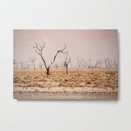 NAMIBIA ... pastel tones III Metal Print