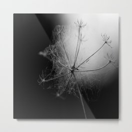Black and White Cobweb Metal Print