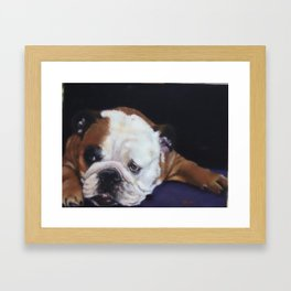 Tuco  Framed Art Print