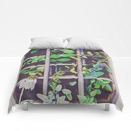 Just Living Comforters