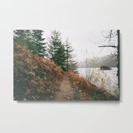 Happy Trails XVI Metal Print