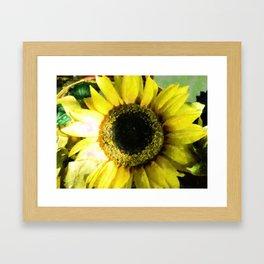 Sunflower Bold Framed Art Print