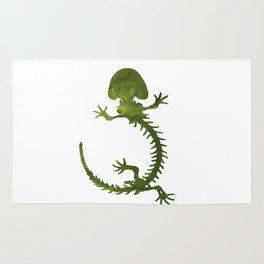 Hellbender skeleton Rug