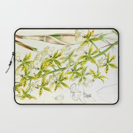 A orchid plant - Vintage illustration Laptop Sleeve