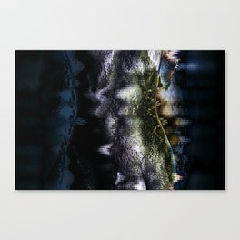 Belly Canvas Print