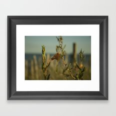 Dune Flower Framed Art Print