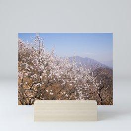 Blooming Spring - Sakura in Beijing - China #decor #society6 #buyart Mini Art Print